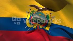 Large ecuador national flag waving