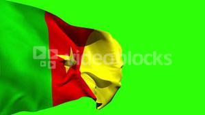 Large cameroon national flag blowing