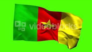Cameroon national flag blowing in the breeze