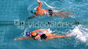 Fit swimmers racing in the swimming pool