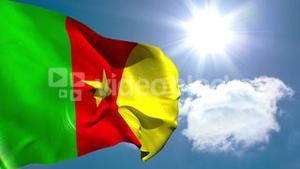 Cameroon national flag waving