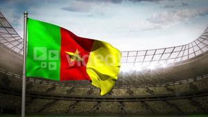 Cameroon national flag waving on stadium arena