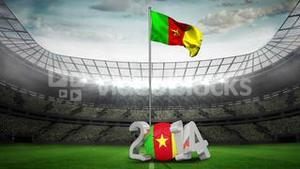 Cameroon national flag waving in football stadium