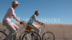Senior couple going on a bike ride on the pier