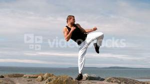 Martial arts expert practicing by the coast