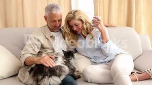 Happy couple petting their grey fluffy cat on the couch