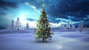Snow falling christmas tree in snowy landscape
