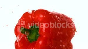 Water falling on red pepper
