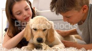 Happy siblings with their puppy at home