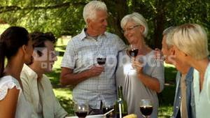 Older couple toasting with family in park