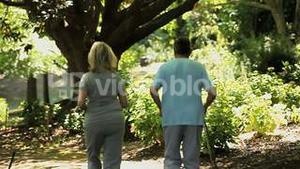 Elderly couple jogging in the forest