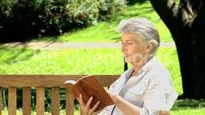 Old woman reading a book on a bench