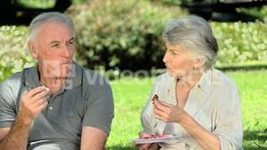 Old man feasting at picnic with his wife