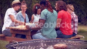 In high quality format happy friends in the park having barbecue