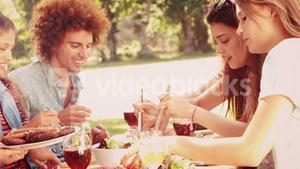 In slow motion happy friends in the park having lunch