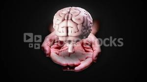 Hand presenting a spinning brain