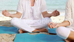 Peaceful couple meditating in lotus pose at the beach