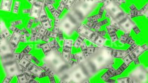 Money in the water on green screen background