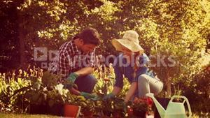 Happy couple gardening in the park