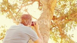 Handsome man taking a picture of tree