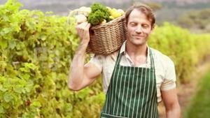 Young happy farmer holding a basket of vegetables
