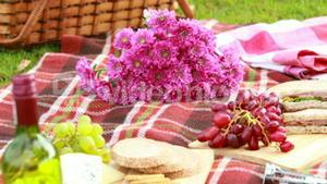 Overview of tasty food on the picnic blanket