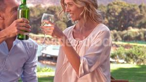 Smiling couple drinking wine on picnic blanket
