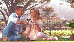Smiling couple toasting on picnic blanket in slow motion