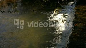 Small waterfall on the stream