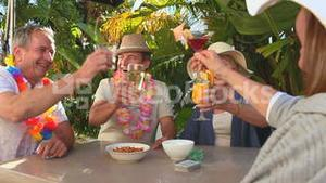 Elderly friends making an aperitif together
