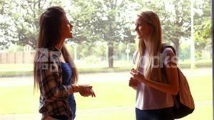 Two students talking to each other