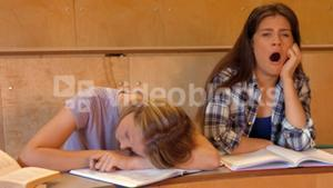 Student asleep with partner on the verge