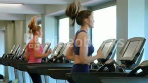 Fit women working out in gym