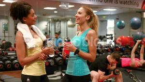 Fit women chatting in the gym