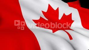 3d Render of the Canadian flag