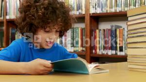 Smiling little boy reading a book