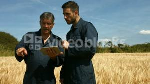 Farmers checking crops using tablet
