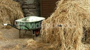 Hay in the horse stable