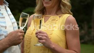 Mature happy smiling couple drinking champagne