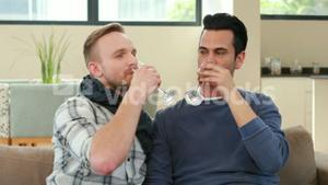 Homosexual couple drinking champagne