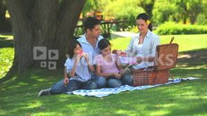 Happy family eating watermelon on a picnic