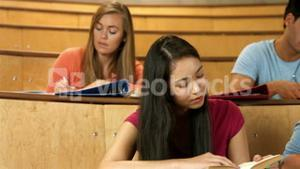 Classmates studying in library