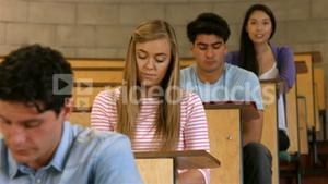 Concentrated students during lesson