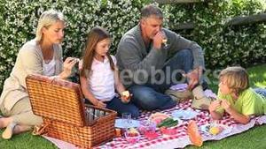 Family picnic on lawn