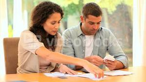Young couple working on their accounts