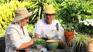 Happy mature couple potting plants
