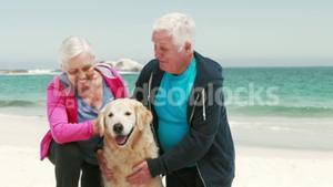 Old retired couple with dog