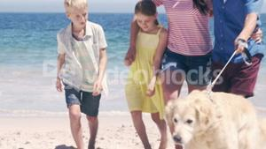 Cute family walking the dog