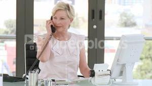 Professional businesswoman working at her desk