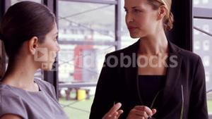 Businesswoman talking to each other